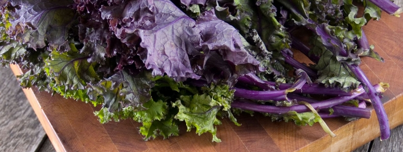 Cabbage And Soybeans May Improve Immune Function