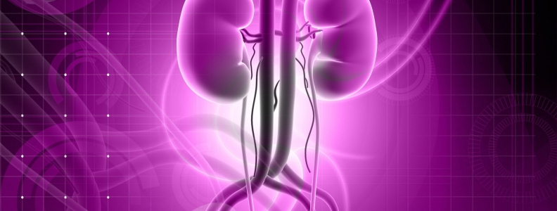 Acid-reflux Drugs Linked to Kidney Disease Risk