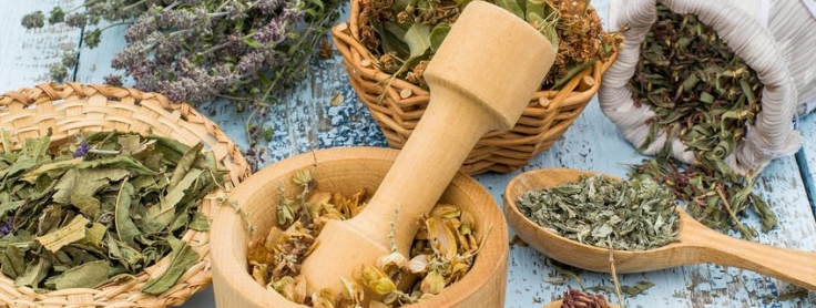 Treating Infected Wounds: 5 Homeopathic Case Studies – Naturopathic