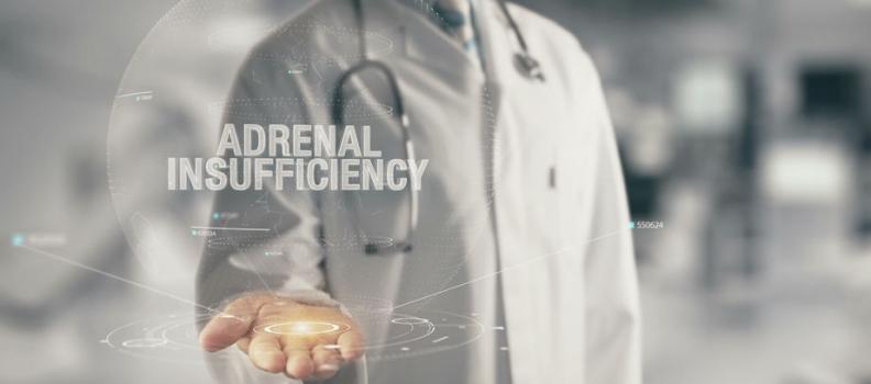 HPA Repair: The Adrenal Reset Diet
