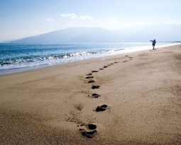Leaving Footprints of Chronic Pain