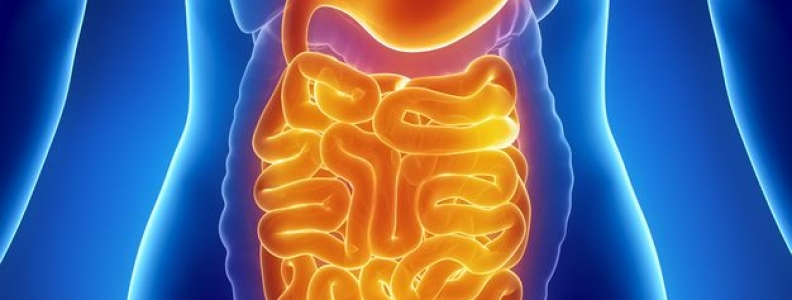 Mood and Leaky Gut: From Science Fiction to Scientific Fact